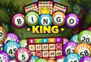 बिंगो राजा