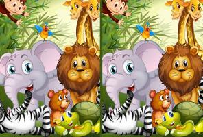 Find Seven Differences Animals