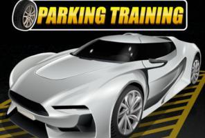 Parkavimo mokymas